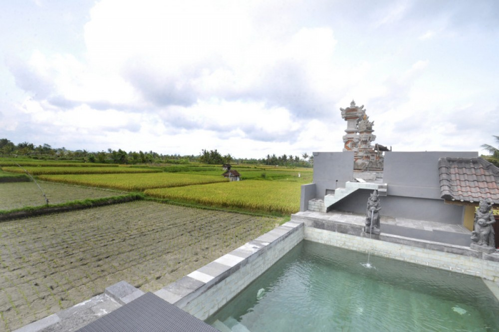 BALINESE STYLE HOUSE SURROUNDED BY RICE FIELD VIEW