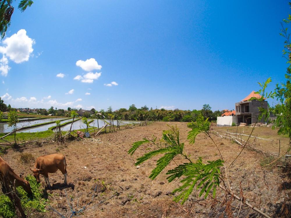 GREAT SHAPE FREEHOLD LAND IN UMALAS