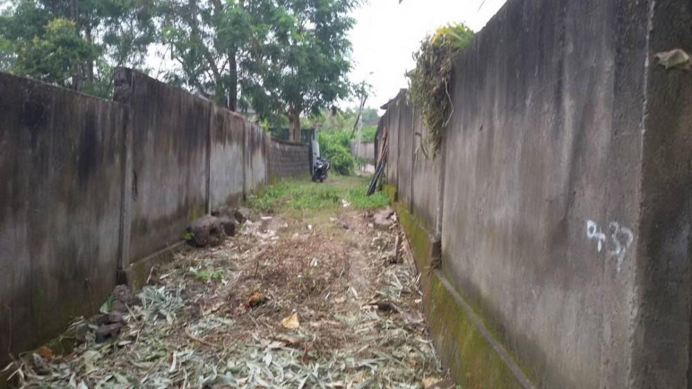 Bagus sebidang tanah untuk sewa di Pererenan