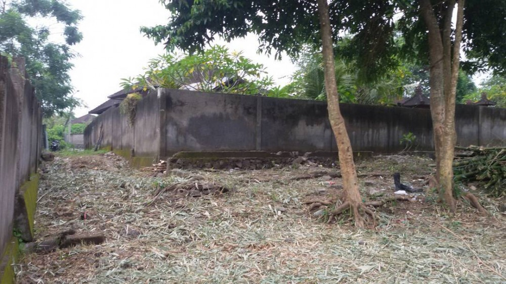 Great plot of land for lease in Pererenan