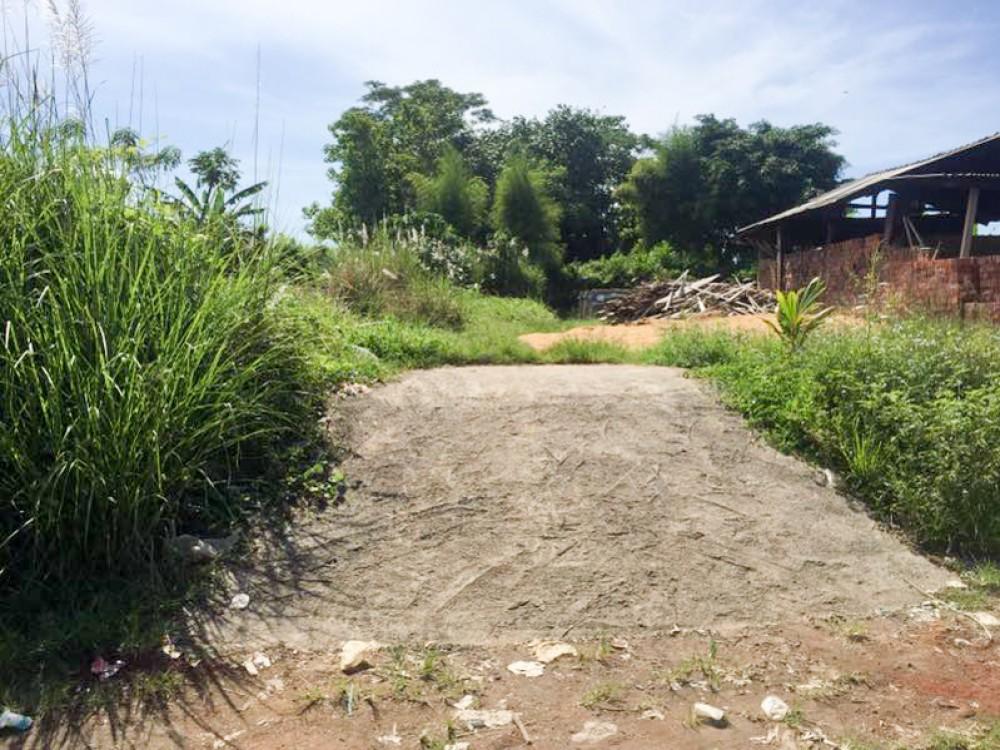Terrains spacieux à vendre à Gianyar