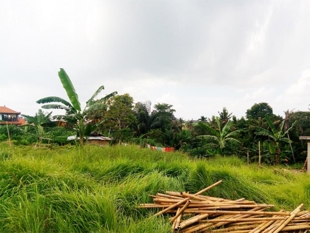 Canggu / Pererenan - Tanah permukiman yang ideal