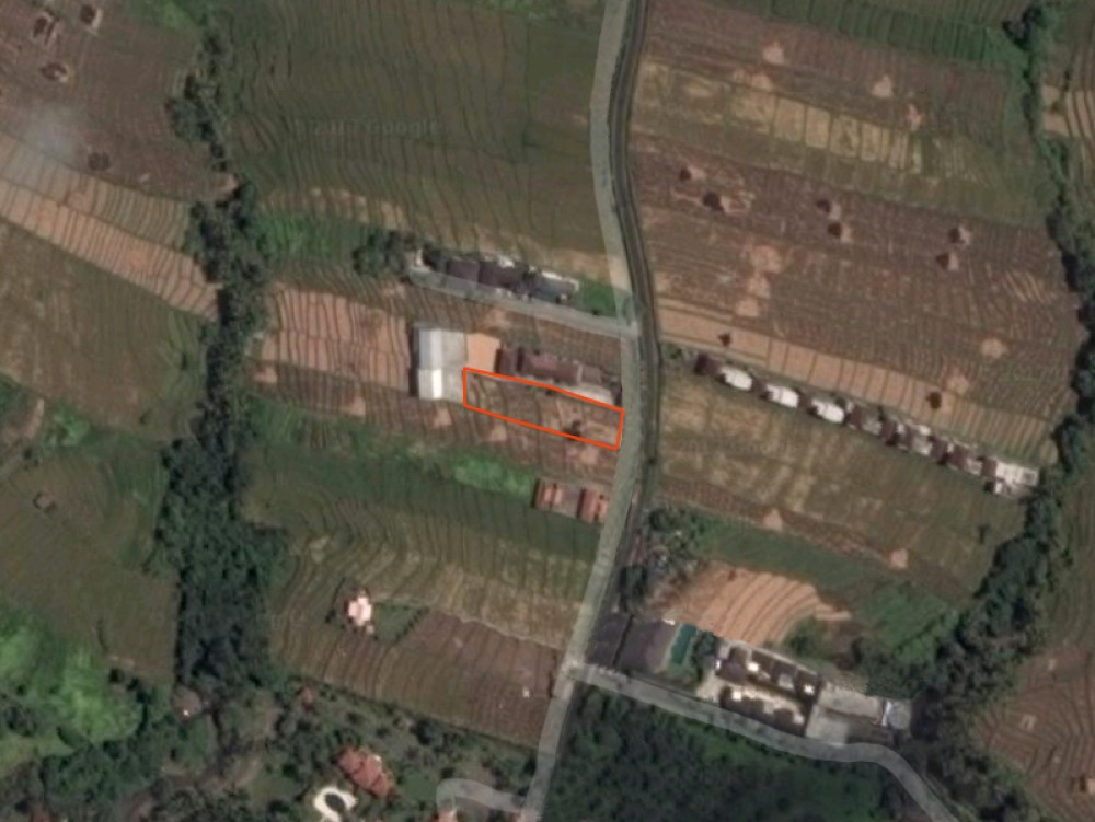 Canggu/Cemagi - Beautiful land 100 meters from the beach