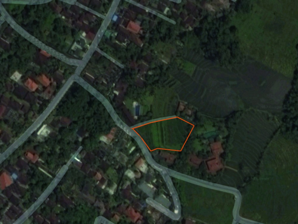 Gorgeous leasehold land in Pererenan