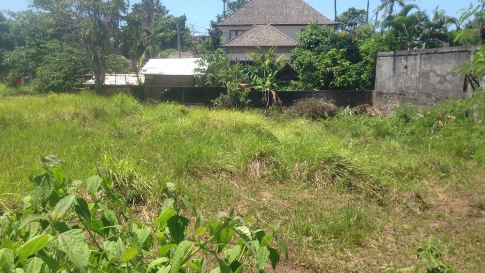 Prime Location 20 Are Land for Sale in Canggu Area