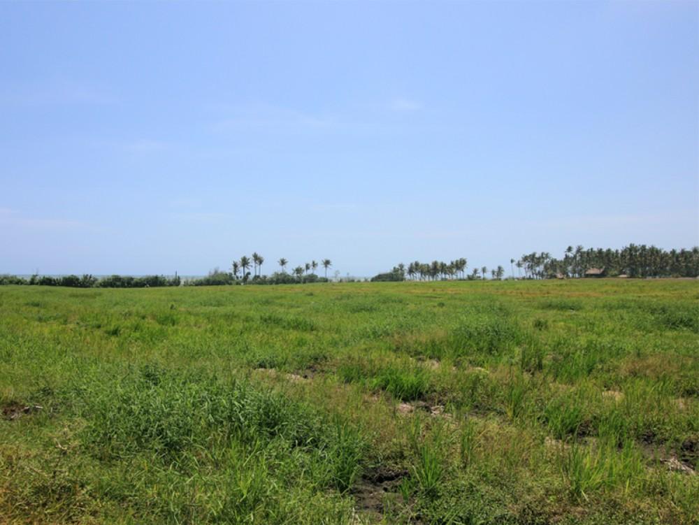 Tanah depan pantai yang indah dan murah di Pantai Pasut - Tabanan
