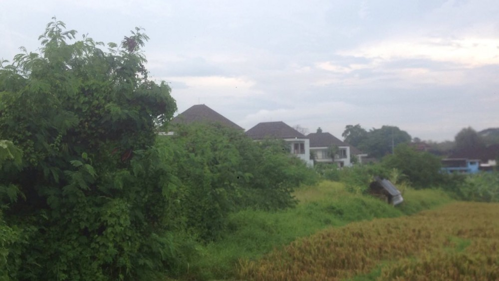 Cukup Lokasi 34 Apakah Tanah Dijual di Canggu