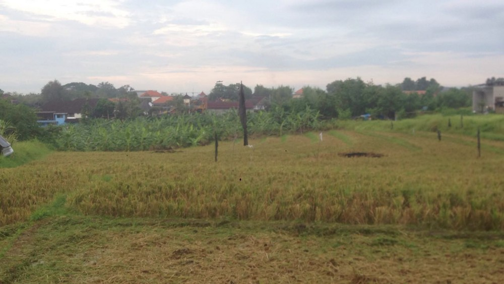 Quite Location 34 Are Land for Sale in Canggu