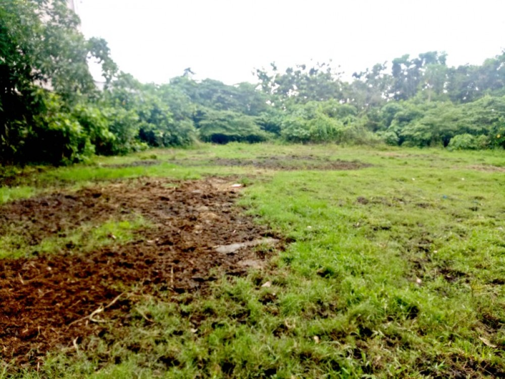 natural land for sale 17 are in berawa