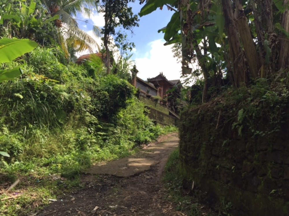 NICE LAND FOR SALE IN PAYANGAN AREA