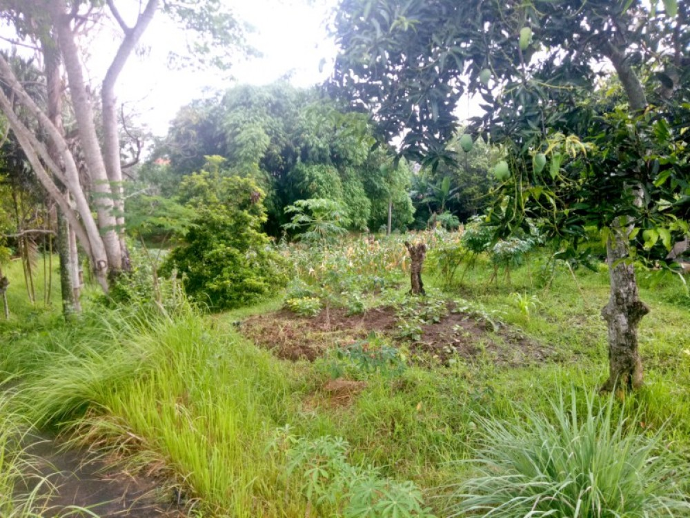 Walking distance Land 18 are close to beach
