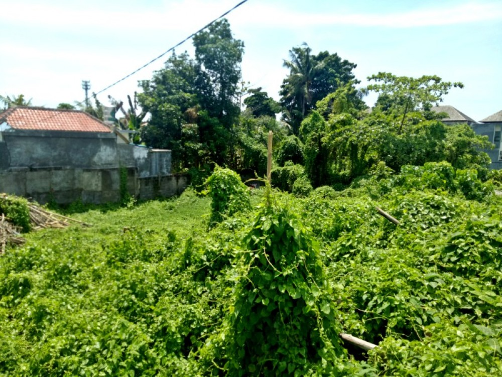 Good Value small plot 4 are land for sale