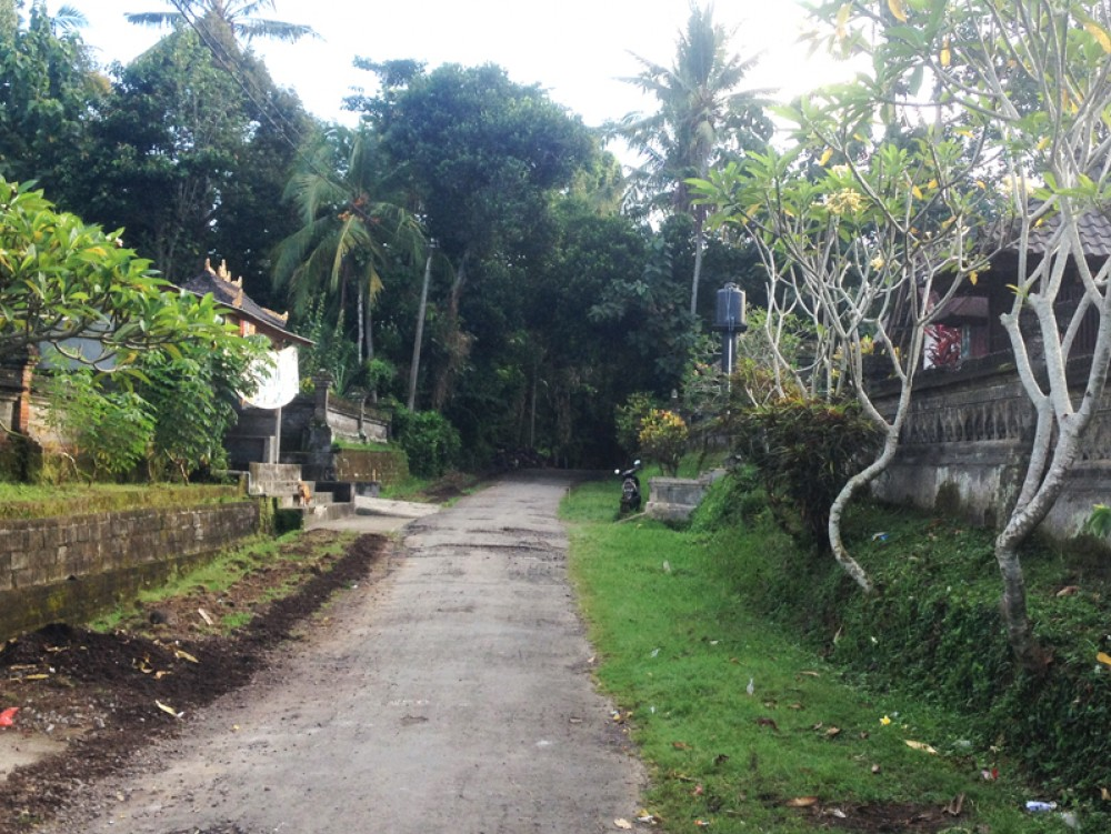 Cheap Freehold land in Tabanan