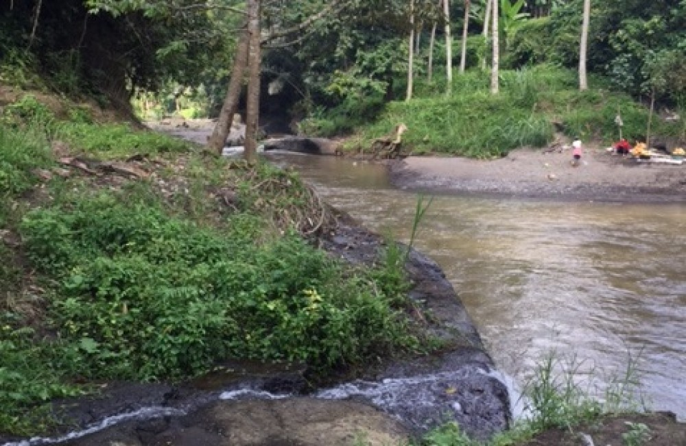 BEATIFUL LAND FOR SALE INFRONT OF AYUNG RIVER UBUD