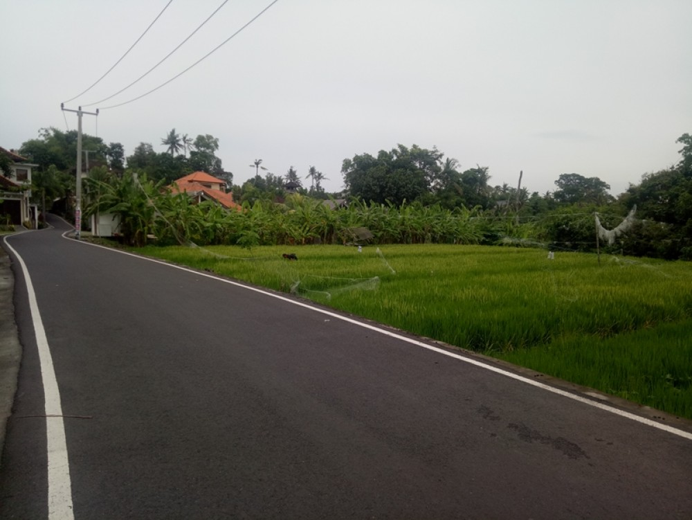 Stunning Leasehold Land 19 Are in Berawa for Sale