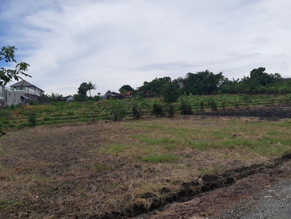 Fantastic 25 Are Leasehold Land in Padonan for Sale