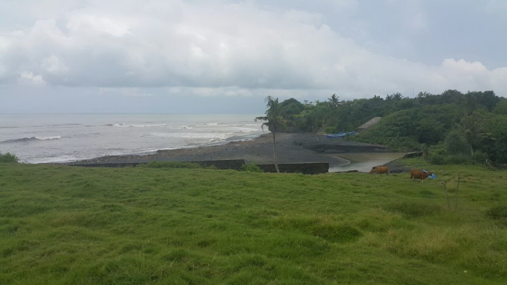 Reduced Price Stunning Nyanyi Beachfront Land for Sale