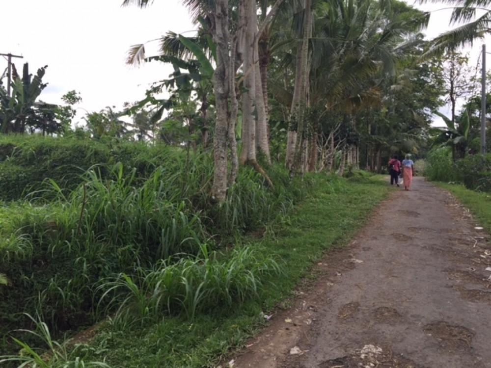 Superbe et incroyable vue sur la terre à louer à Sanding Pejeng - Ubud