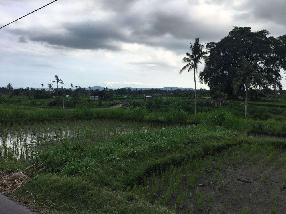 Freehold land in Padang Kerta-Karangasem