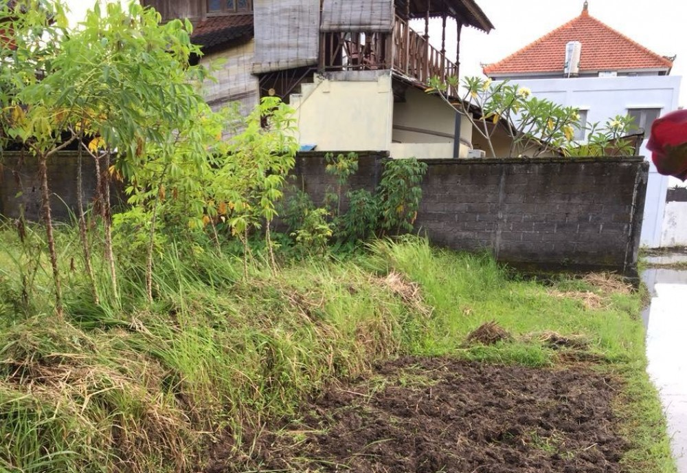 Tanah sawah dijual di Petulu Gianyar