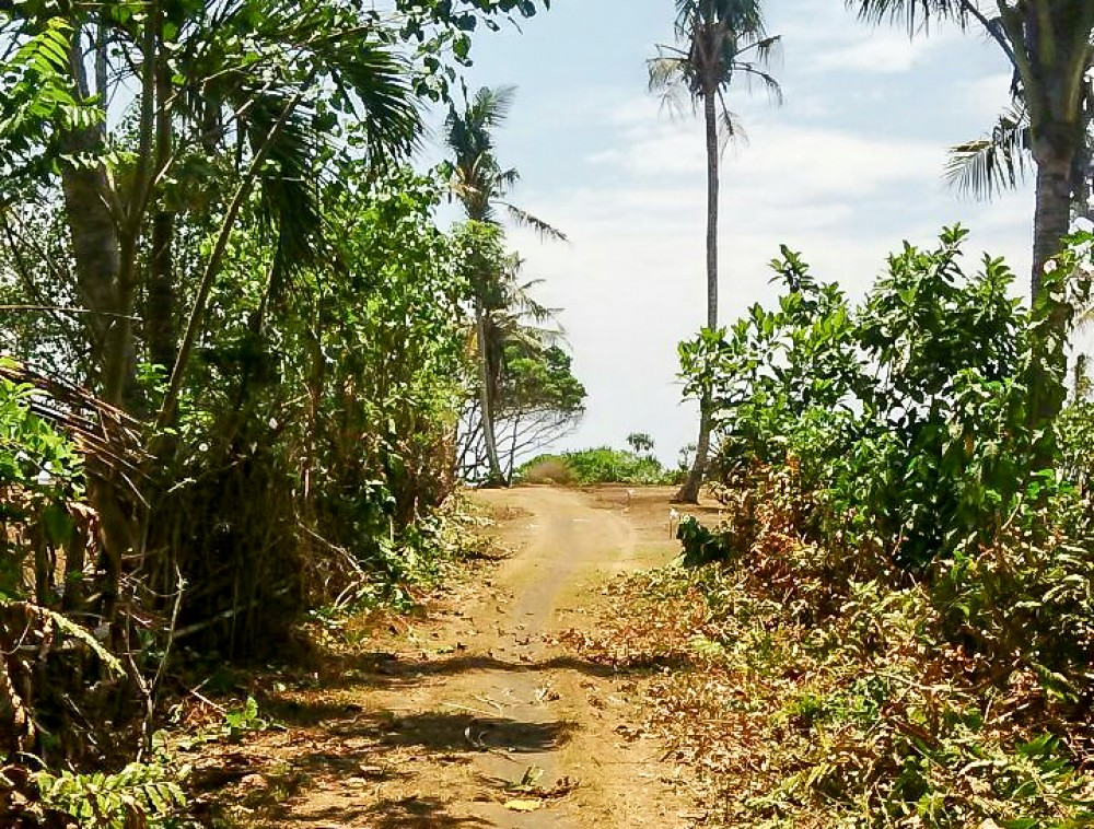 Great beachfront freehold land for sale in Jembrana