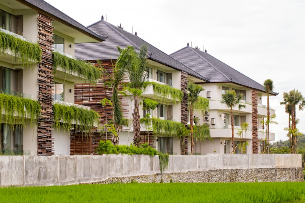 Apartments in Canggu-Seseh with ocean, ricefield and vulcano view.