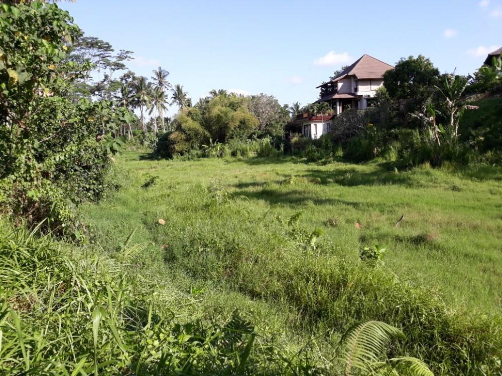 Nice land in kutuh-sayan ubud