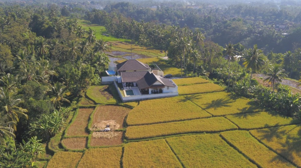 BRAND NEW VILLA WITH JUNGLE VIEW CLOSE TO CENTRAL UBUD
