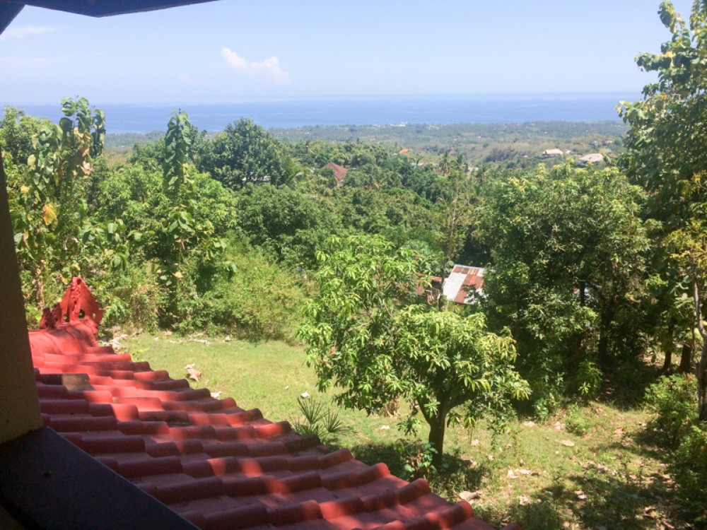 Ocean View Spacious Freehold Land for Sale in Lovina