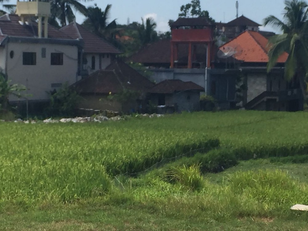 Strategic land for sale and the closes from ubud central