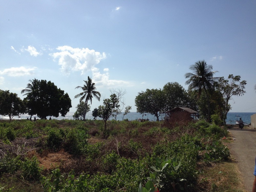 Reduced Price Stunning 53.5 Are Residential Beachfront Land in Lovina for Sale