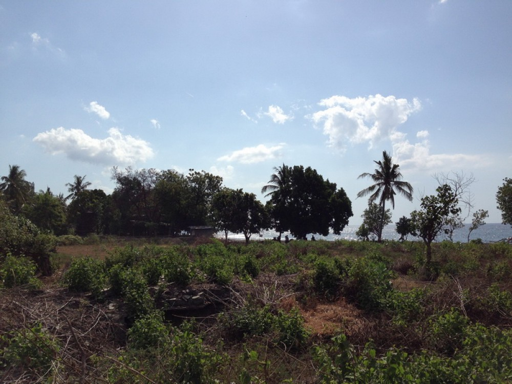 Beautiful 53.5 Are Residential Beachfront Land for Sale
