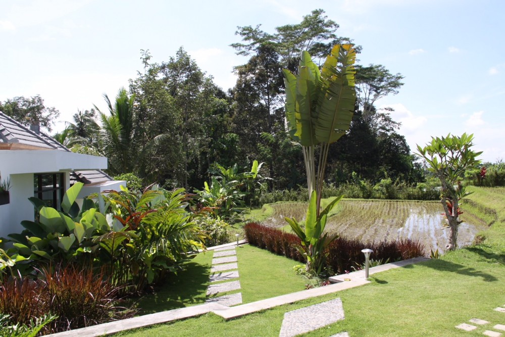 LUXURY VILLA SET ON QUITE AREA COMPLATED BY JUNGLE AND RICE FIELD VIEW