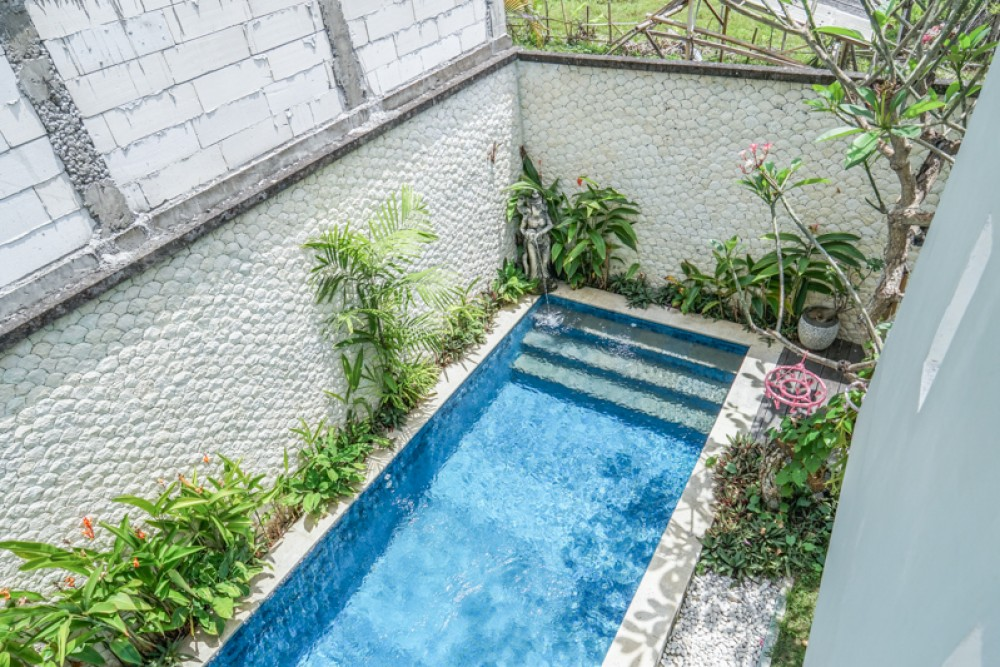 Lovely Freehold Villa Complex for rent in Seminyak