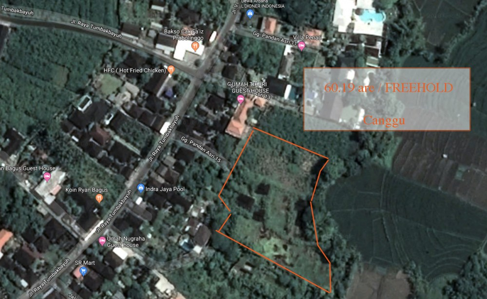 Amazing Spacious Freehold Land for Sale in Canggu