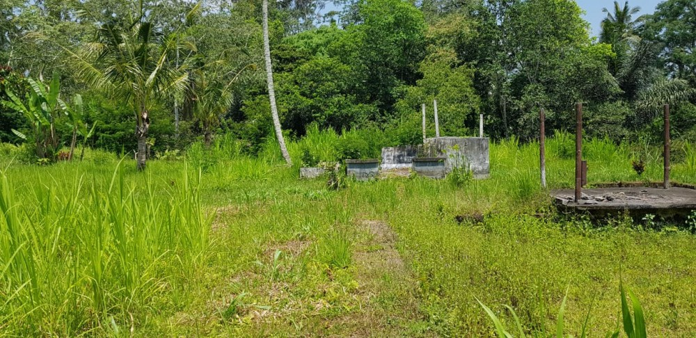 The best oppurtunity to built the new resort or villa complect in north of Ubud