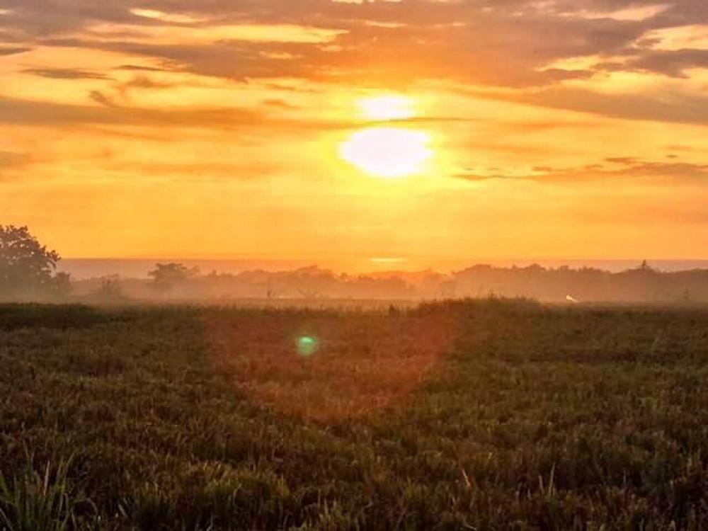 Stunning Sunset Views Land