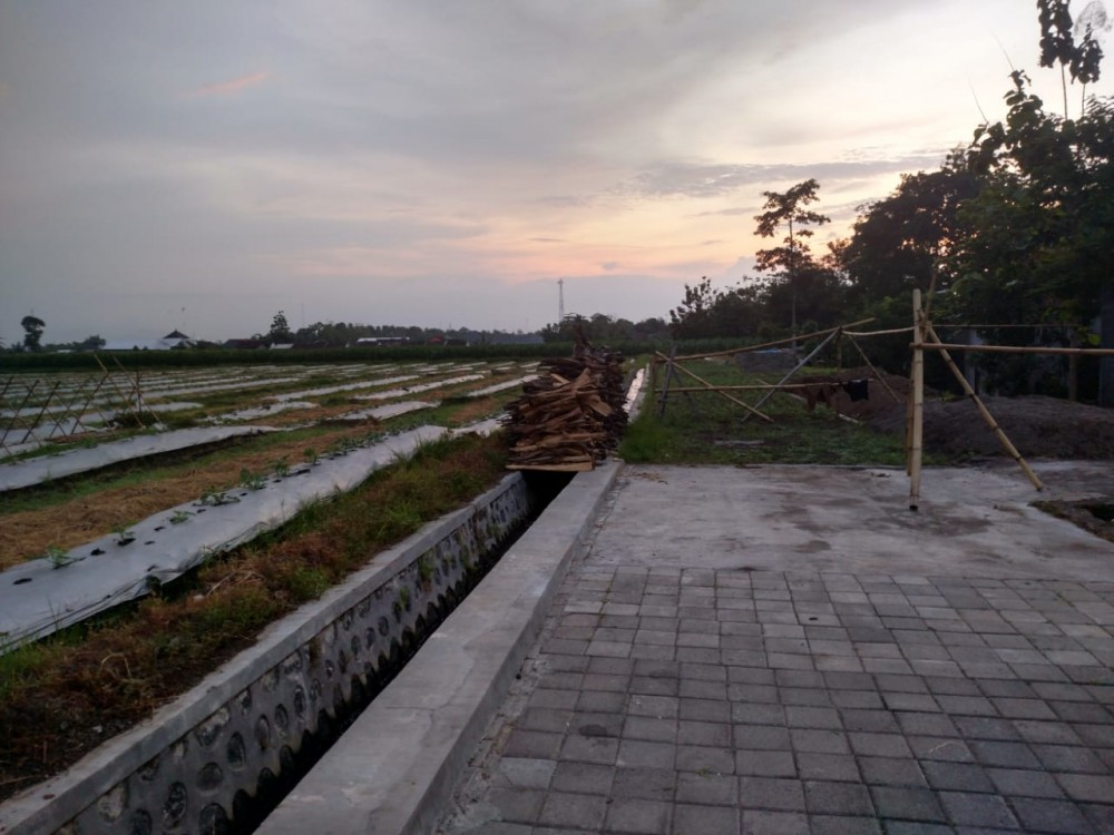 Development Land for Sale in Banyuwangi
