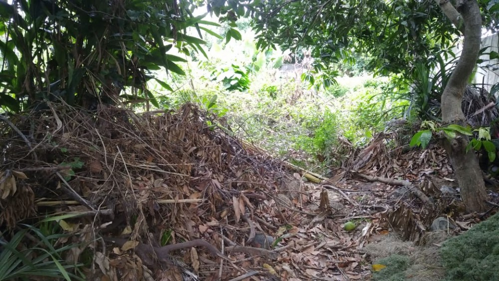 5-13 are Rare  Land for Lease in Batu Belig