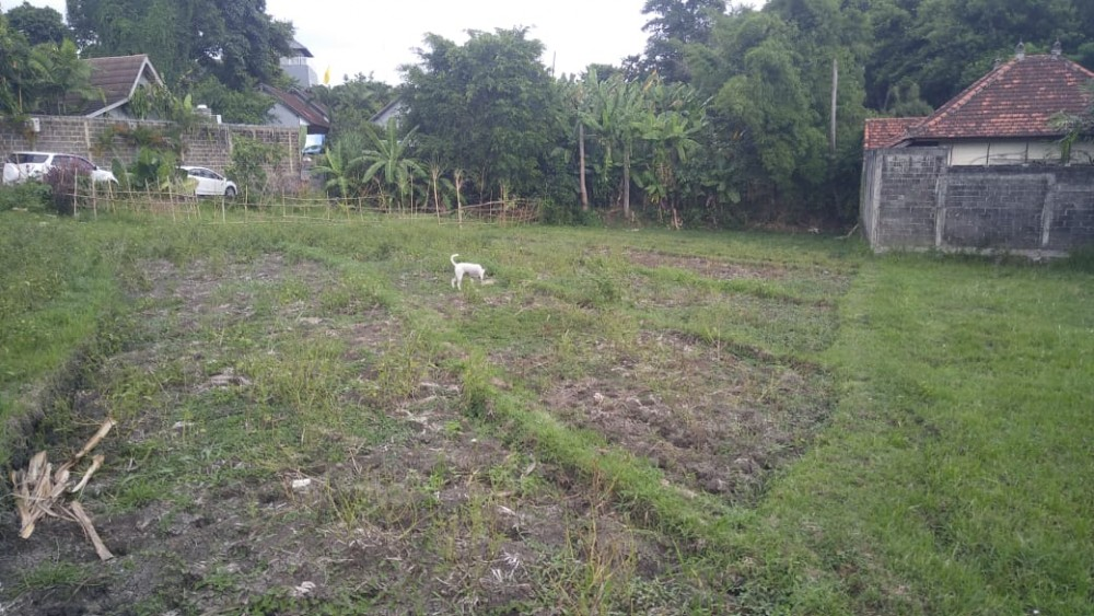 Rare Small Plot Land for Sale In Umalas