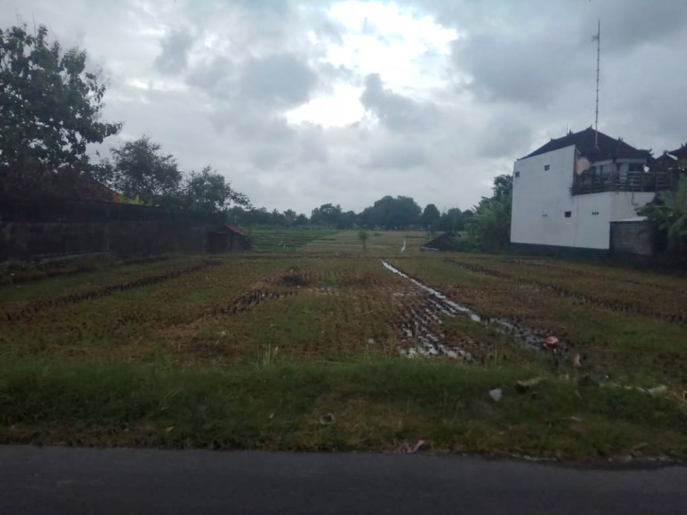 Perfect Small Plot for Lease in Tiying Tutul