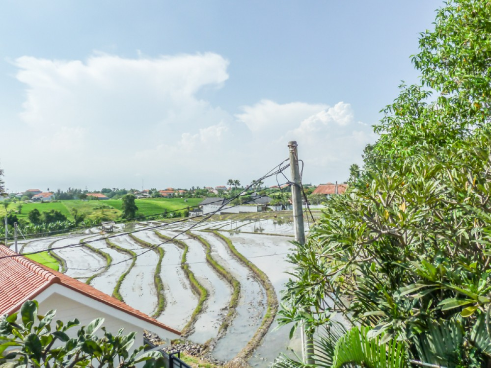 Three Bedrooms Property with Rice Paddies View for Sale in Berawa
