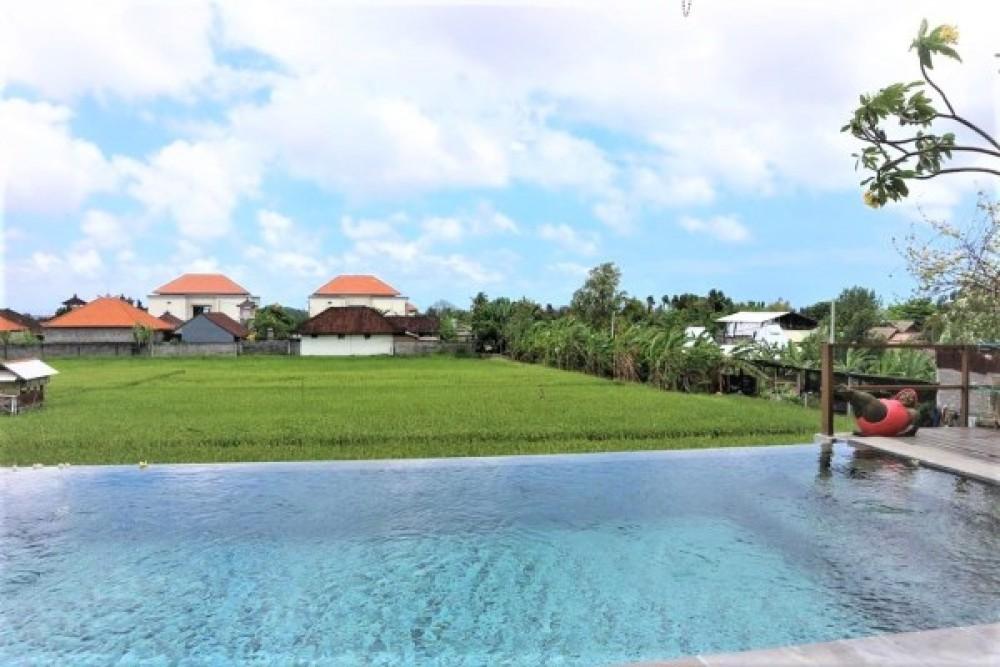 stunning rice field view for the five bedroom villa in kerobokan