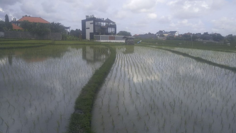 Amzing 20 are Land for Lease in Bumbak