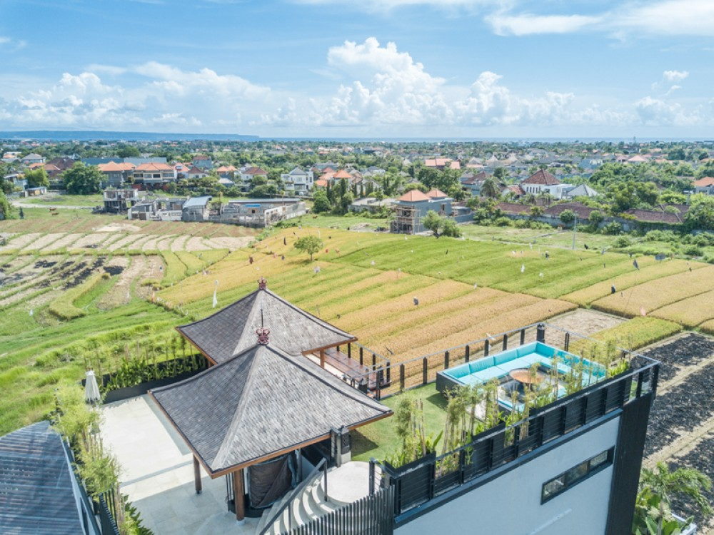 Luxurious Modern Villa with Rice Paddies view for Sale in Umalas
