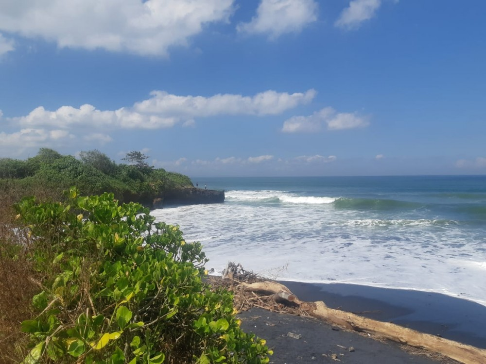 Stunning Beachfront Land in East Selemadeg for Sale