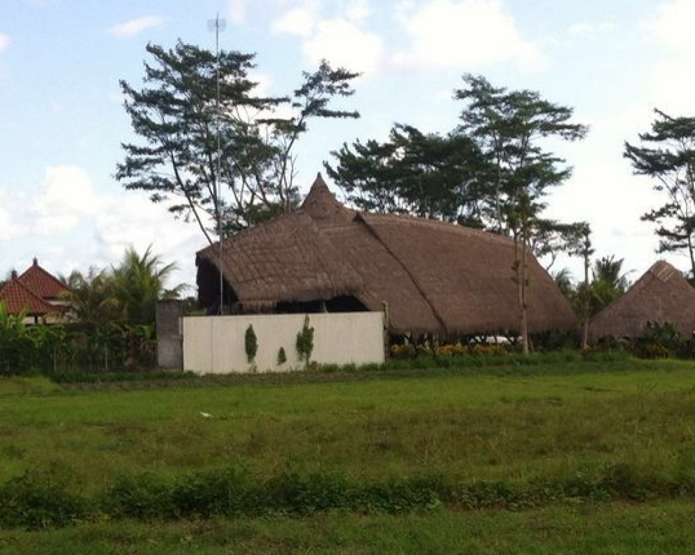 Good Location Freehold Land for Sale in Ubud