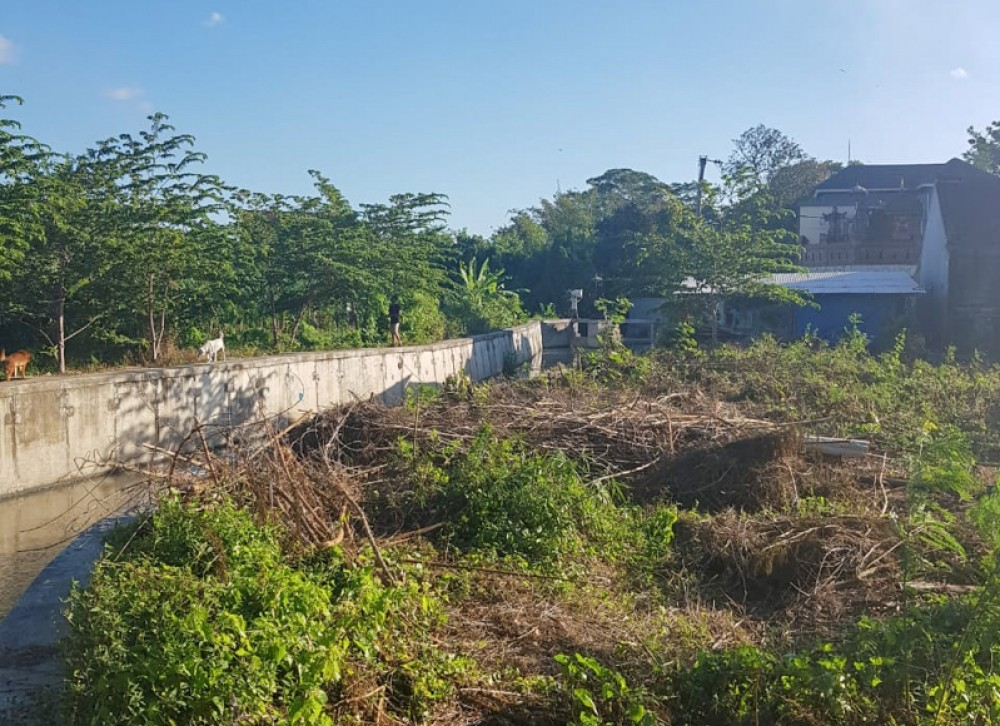 Ideal Shape Land for a Villa in Canggu for Sale