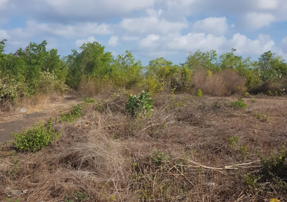 Beautiful Land with Great View for Sale in Ungasan