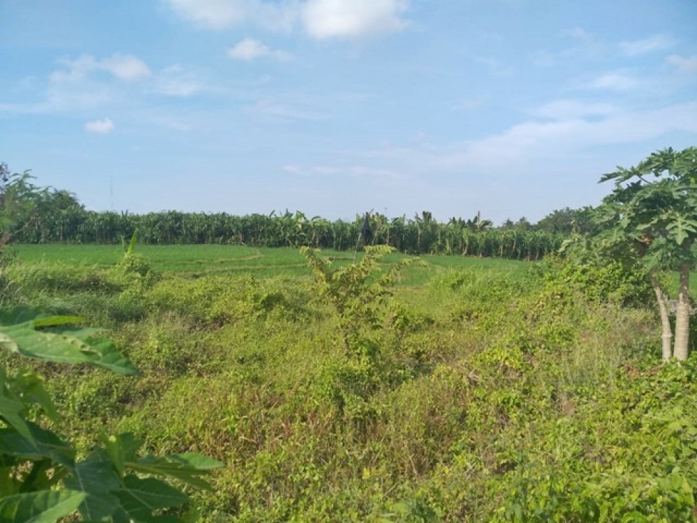 Ideal Residential Leasehold in Tumbak Bayu for Sale